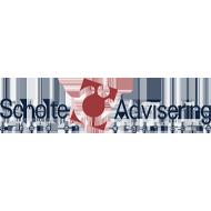 Scholte Advisering logo